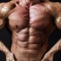 お腹回りの4種類の筋肉名称と鍛え方!これが部位別の腹筋の違い